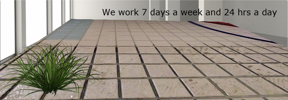 Tile and Grout Cleaning Dombarton