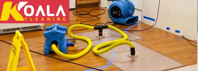 Same Day Fast Carpet Flood Water Damage Restoration