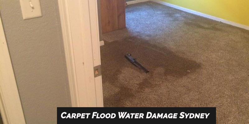 Carpet Flood Water Damage Restoration Sydenham