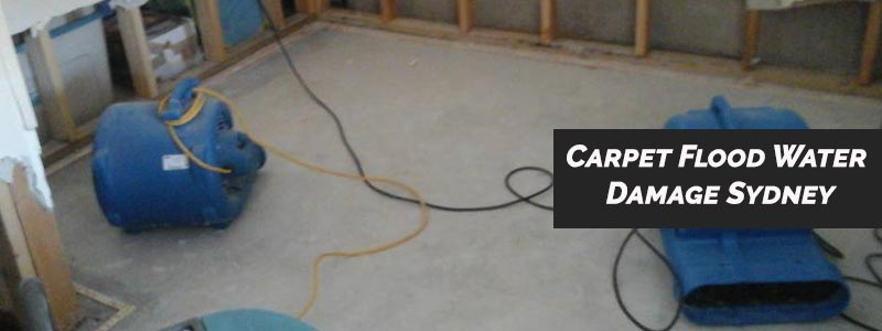 Carpet Flood Water Damage North Manly