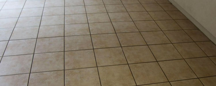 Tile and Grout Cleaning Services North Sydney