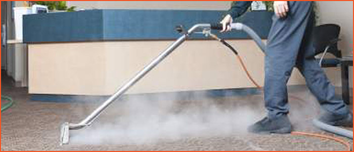 Carpet Cleaning Cotton Tree