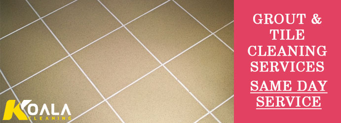 Grout and Tile Cleaning Waverley Park