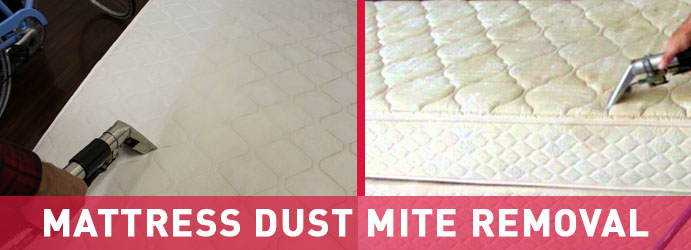 Mattress Dust Mite Removal