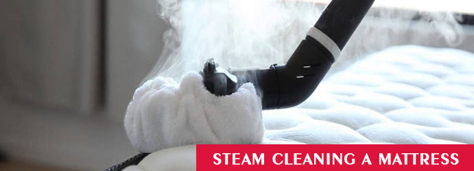 Steam Cleaning a Mattress
