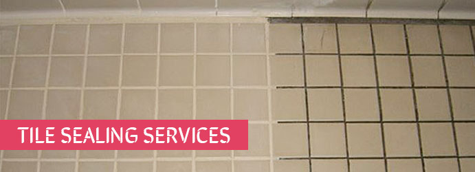 Tile Sealing Services Black Springs