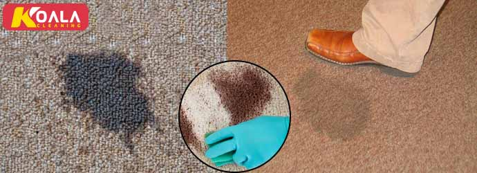 Carpet Stain Removal Gilles Plains
