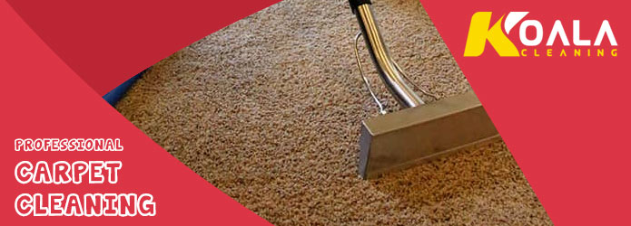 Professional Carpet Cleaning Burton