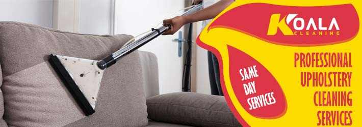 Professional Upholstery Cleaning Great Bay