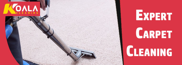 Expert Carpet Cleaning Jericho