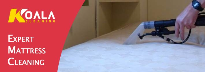 Expert Mattress Cleaning Hobart
