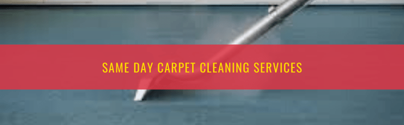 Different Steps Involved in Carpet Cleaning